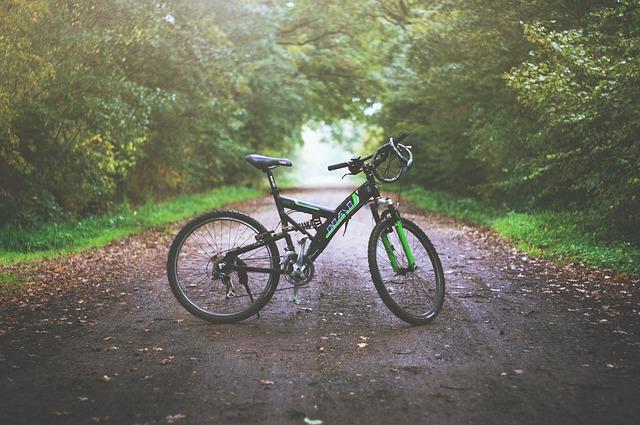 http://zitennsya.cloud-line.com/zitennsya/images/mountain-bike-1149074_640.jpg